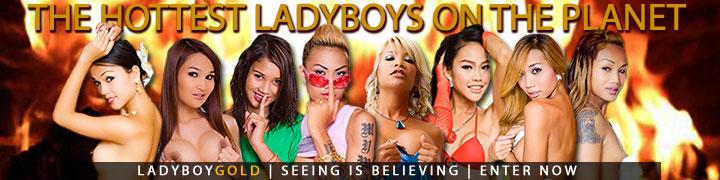 Enter ladyboygold here